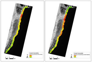 The coastline of Mexico's Yucatan peninsula is susceptible to wave erosion, but the coral reef and sea grass beds protect the coastline. The importance of this ecosystem service was assessed using wave energy and coastal erosion information. The EO-derived data on benthic habitats and depths were compared to a scenario without these habitats. The map displays coastal vulnerability in the absence (right) and presence (left) of marine vegetation and coral reefs. Red marks high vulnerability and green low vulnerability.