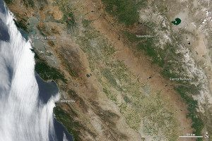 In this June 2014 satellite image of the Pacific coast, some mountain forests are holding on, but much of the area around the Coast Range has browned considerably. In the Sierra Nevada, the snow cover has decreased significantly, and what remains has a tan or gray tint from dust and soil. Just north of Yosemite National Park, the land isn't only brown from drought, it is also scarred from 2013 wildfires.