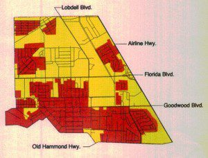 The data collected through the city's effort will be integrated into a larger tree canopy classification project.