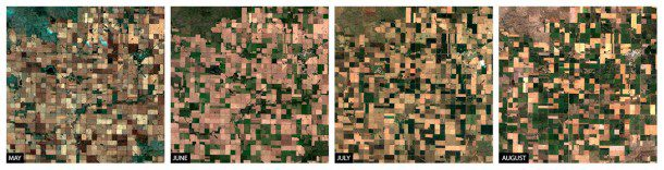 A time series over Gettysburg, S.D., demonstrates Blackbridge's new agricultural imagery service, which leverages the collection capacity of the RapidEye constellation to offer agro-consulting firms and other customers an enormous pool of multitemporal, orthorectified 5-meter imagery collected throughout the season.