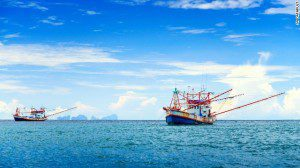 One of the earliest and most successful uses of Earth-observing satellite technology for law enforcement has been the monitoring of illegal fishing, tracking ships to witness crimes in real time.