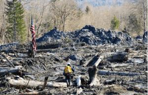 Landslide_Report