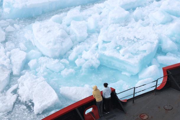 Sea Ice (1)