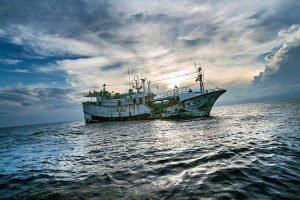 Although this ship, the Sheng Chi Huei 12, a Taiwanese fishing vessel, was cleared of illegal fishing, boats like it commonly roam the waters of Palau for unlicensed catch. (Credit: Benjamin Lowy/Reportage for The New York Times)