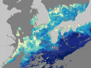 The map above shows chlorophyll concentrations in the waters off of South Korea and Japan on May 12, 2016.
