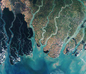A natural-color image captured on March 18, 2016, by ESA's Sentinel-2A shows the various river tributaries, interconnected mangrove forests and fertile floodplains of the Sundarbans. (Credit: Contains modified Copernicus Sentinel data (2016), processed by ESA)