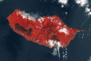 This false-color image shows vegetation in red and the large black patches left by fires where they encroached Madeira's capital Funchal in the southeast. (Credit: Contains modified Copernicus Sentinel data (2016), processed by ESA)