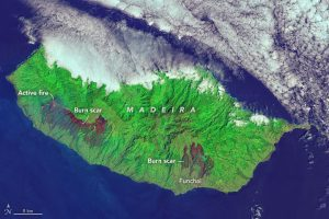 When the Operational Land Imager (OLI) on the Landsat 8 satellite captured this image of Madeira on Aug. 11, 2016, a large fire on the western side of the island was still burning. (Credit: NASA Earth Observatory image by Joshua Stevens, using Landsat data from the U.S. Geological Survey)