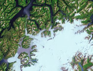 The Landsat-8 satellite captured this image of the advancing Pío XI Glacier in the Bernardo O'Higgins National Park in southern Chile. (Credit: USGS/ESA)